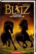 Blitz (Bd. 4) - Ein Rennen auf Leben und Tod